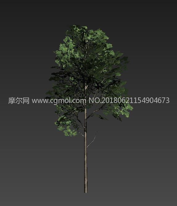 简模面片树