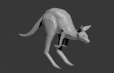奔跑的袋鼠模型