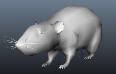 老鼠,小白鼠,�嚎s包�扔匈N�D,max,fbx,obj格式
