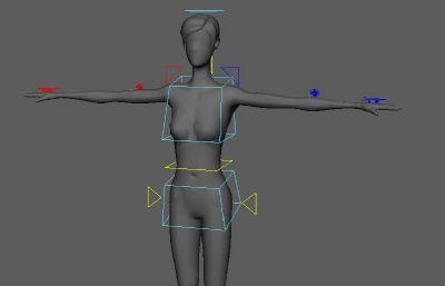 短�l女人,��谓�定maya模型