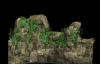 有攀爬植物的石�^山