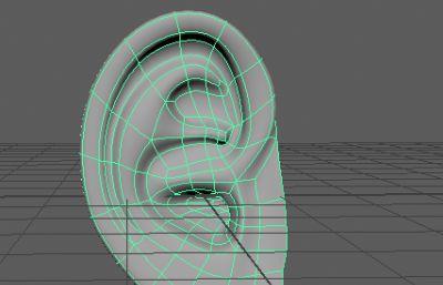 耳朵maya2017模型