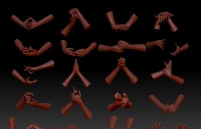 手,手掌,手��,手法ZTL模型