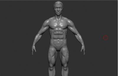 男人A pose,男人�wZTL模型