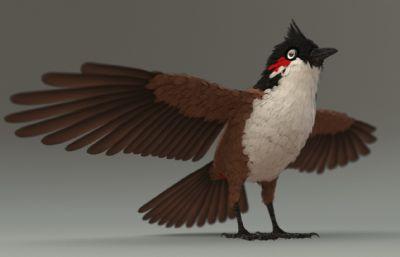翘毛鸟,有绑定的小鸟模型,ma,fbx,abc三种格式