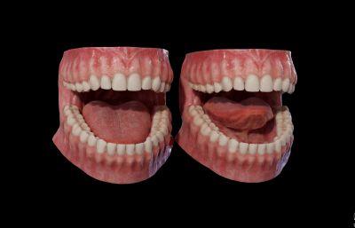 牙齿口腔FBX模型