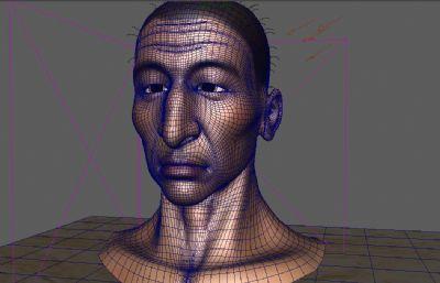 瘦弱的中年男子Maya模型