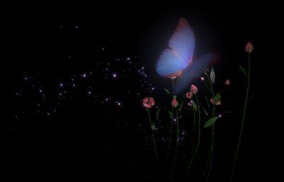 夜晚花�仓虚W�W�l亮的蝴蝶�鼍�maya模型