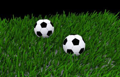 草地上的足球max模型