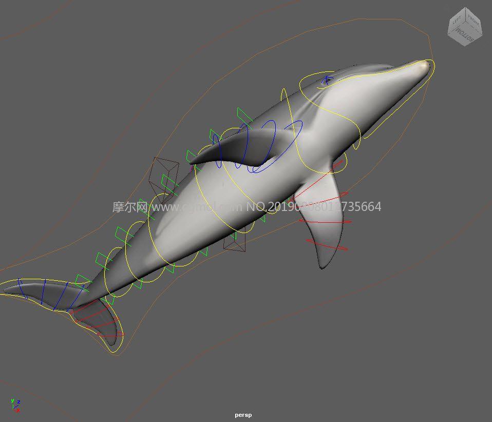 �Ы�定的海豚+一群游�拥男◆~Maya模型