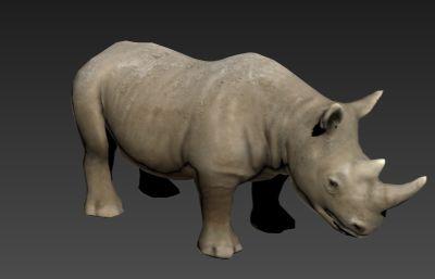 白犀牛3D模型,��行走奔跑�幼�