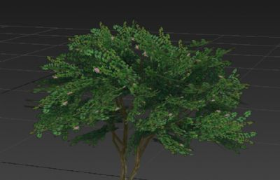 杜鹃花灌木丛3D简模