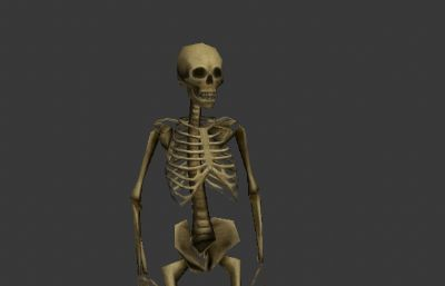 人�w骨骼骷�t3D模型低模
