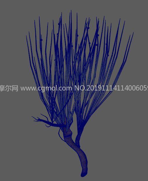 麻�S,木�\麻�S中草�植物FBX模型