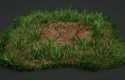 ����的次�r代土地,草地3D模型,MAX,OBJ格式