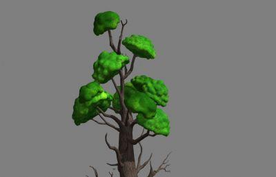 Q版大樹,蒼天大樹maya模型,MB,FBX,OBJ多種格式